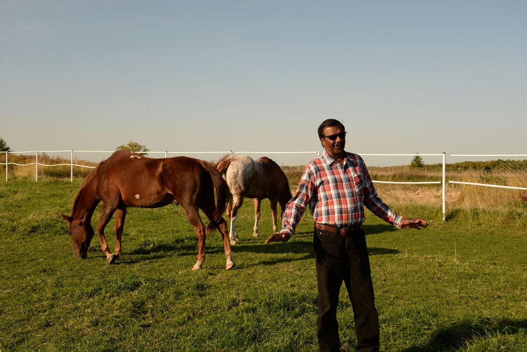 Sham Moteelall in the pasture with his horses
